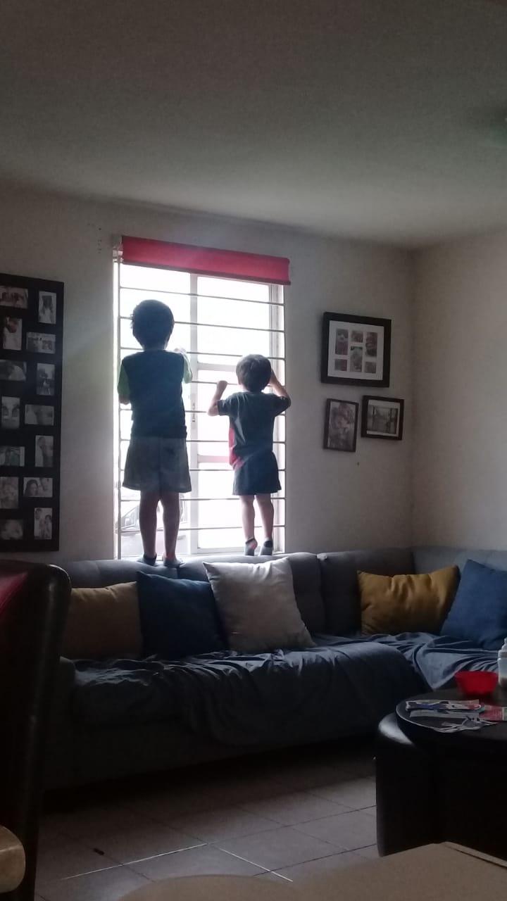 La vida por la ventana